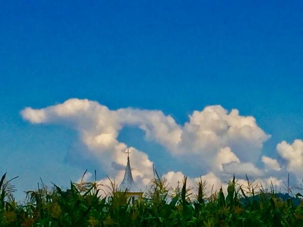 biserica si porumb.jpg